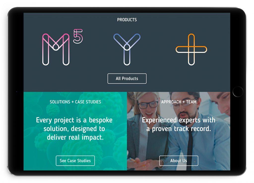 Iceberg Vision Website